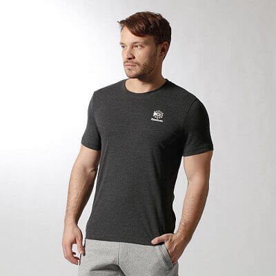 Pánské volnočasové tričko Reebok RR ARCHIVE GT