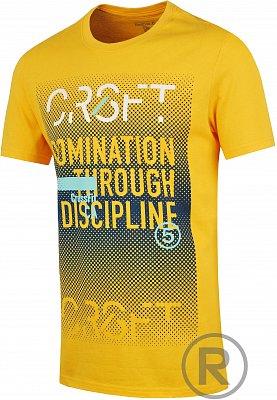 Pánské fitness tričko Reebok RCF GRPHC T 8
