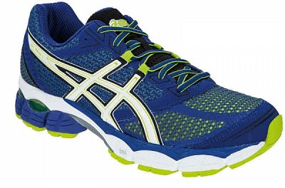 Pánské běžecké boty Asics Gel Pulse 5