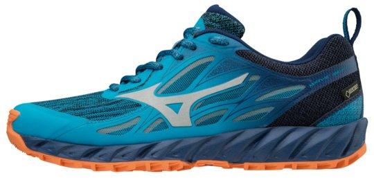 Dámské běžecké boty Mizuno Wave Ibuki GTX