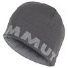 Mammut Mammut Logo Beanie titanium-granit