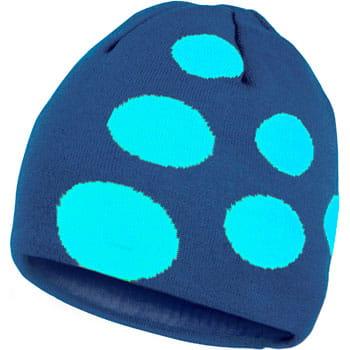 Čepice Craft Čepice Big Logo tmavě modrá