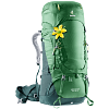 Deuter Aircontact 60 + 10 SL (3320419) leaf-forest