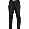Under Armour Storm Iridescent WV Pant