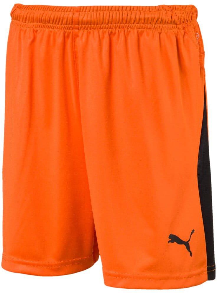 Detské futbalové kraťasy Puma LIGA Shorts with Brief Jr