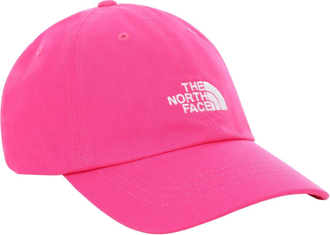 Mützen The North Face Norm Cap