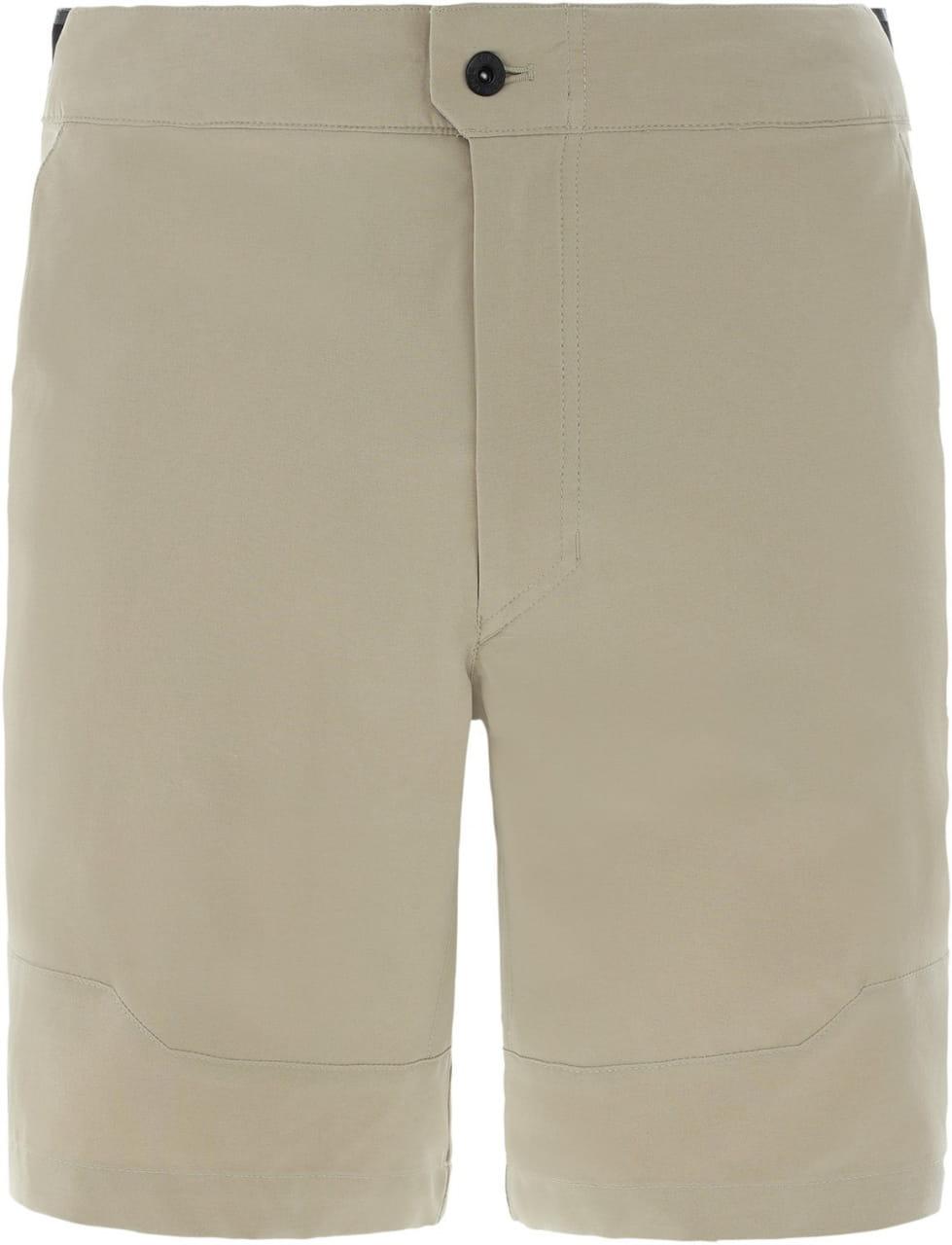 Shorts The North Face Men's Paramount Active Shorts