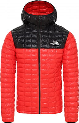 Pánská bunda The North Face Men's Thermoball Eco Hooded Jacket