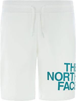 Pánské kraťasy The North Face Men's Graphic Shorts