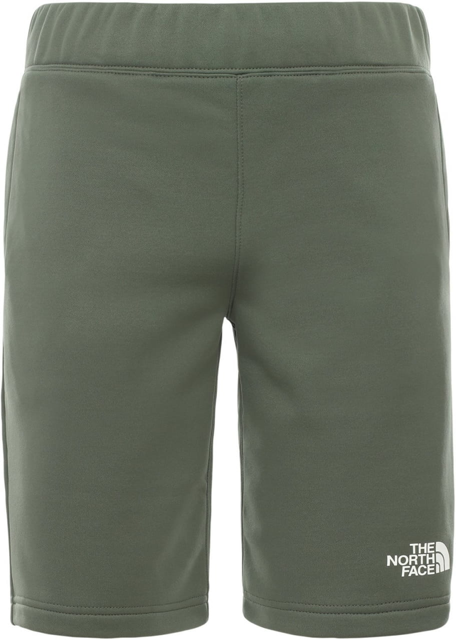 Shorts The North Face Boy's Surgent Shorts