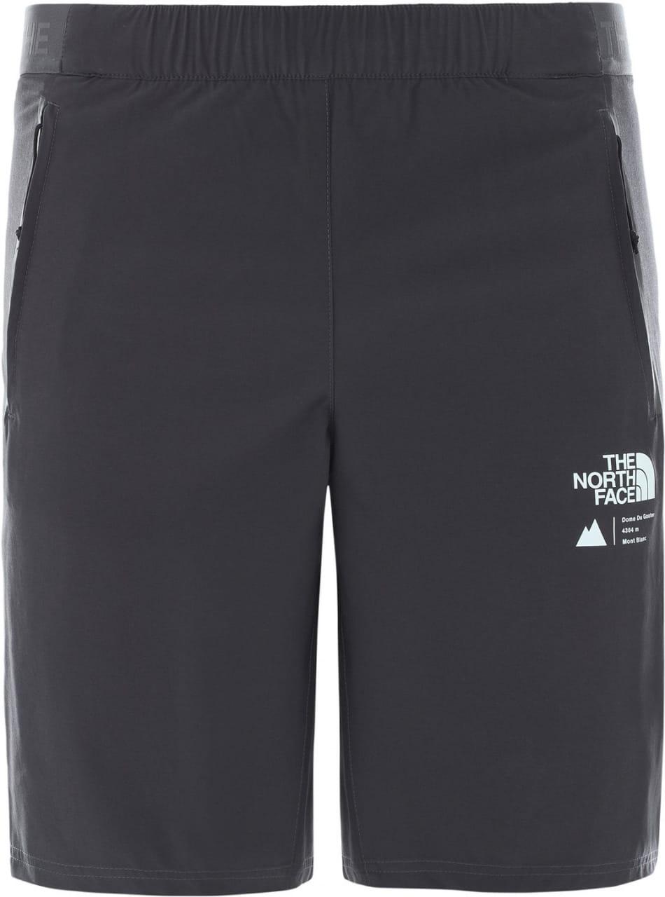 Pánské kraťasy The North Face Men's Glacier Shorts
