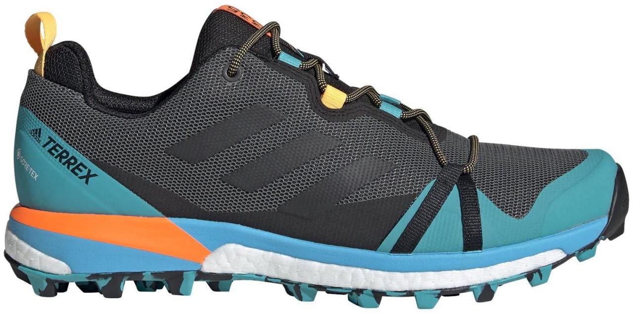 Pánská outdoorová obuv adidas Terrex Skychaser Lt GTX