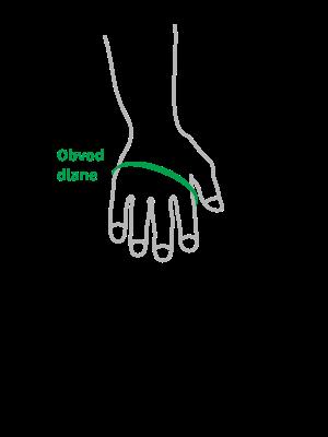 obvod-dlane-sk.png