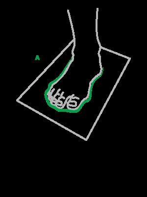 ilustrace-velikost-chodidla.png