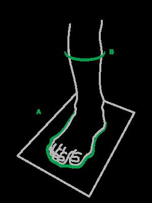 ilustrace-velikost-chodidla-obvod-lytka.png