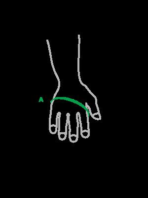 ilustrace-obvod-dlane.png