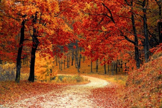 Jak se obléknout na podzimní běhání