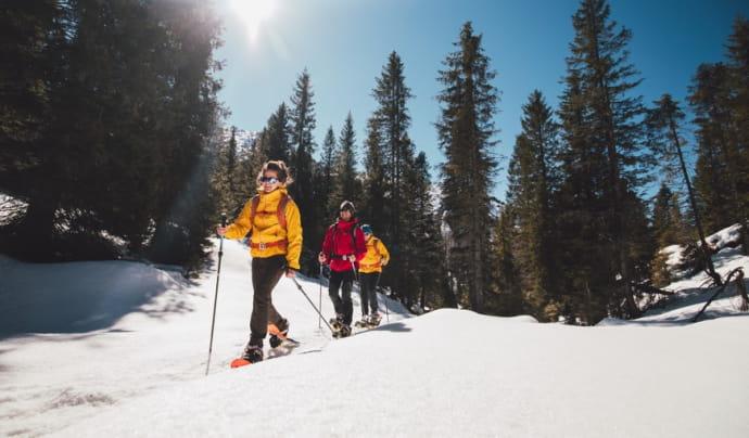 Zima sa blíži, už vetríte nával zimných športov?